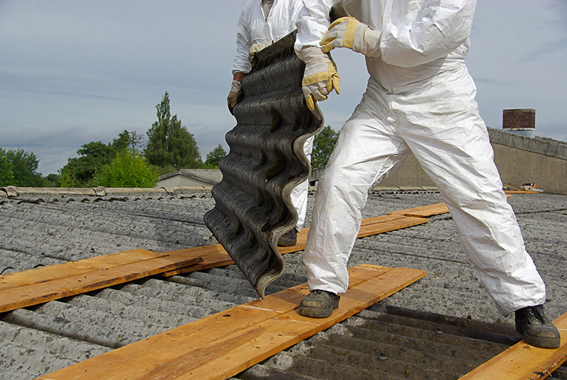 Commercial Asbestos & Mold Services